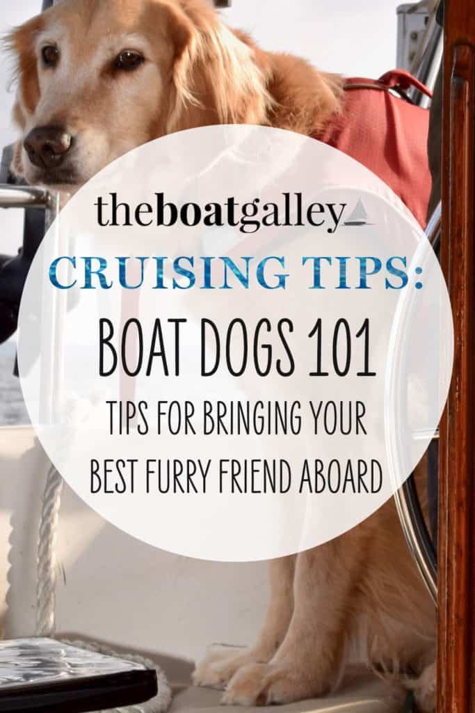 What you need to know to have a great boat dog. Learn how to take any size dog on your boat, how to keep them safe, and best places to cruise with a dog.