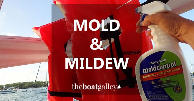 Mold and mildew are the bane of every boat owner in hot, humid areas.