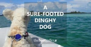 Boating with a dog? Give them more confidence in the dinghy with this simple DIY project to give them better footing. Takes five minutes . . . or less!
