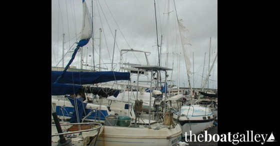 Boats that did not remove sails damaged by Hurricane Marty