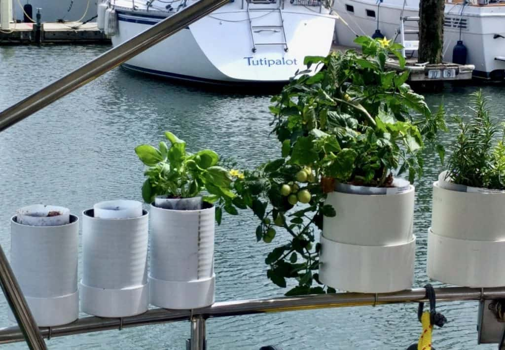 Boat garden when first planted