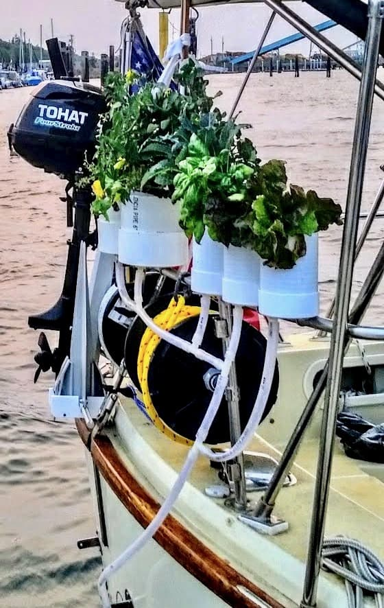 Boat garden on the stern rail of our sailboat
